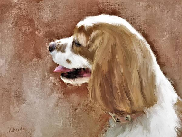 Painting - Bella by Diane Chandler