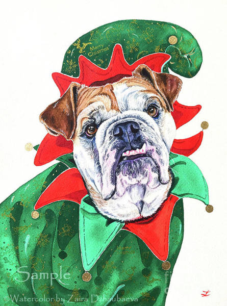 English Bulldog Painting - Bella, Santa's Little Helper by Zaira Dzhaubaeva
