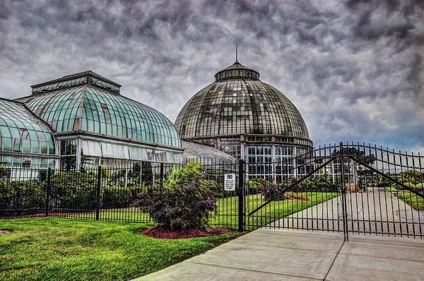 Photograph - Belle Isle Conservatory Dsc_0907 by Michael Thomas