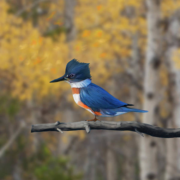 Digital Art - Belted Kingfisher In Aspens by Mark Miller