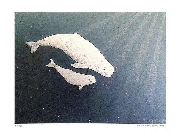 Mixed Media - Beluga And Calf by Art MacKay