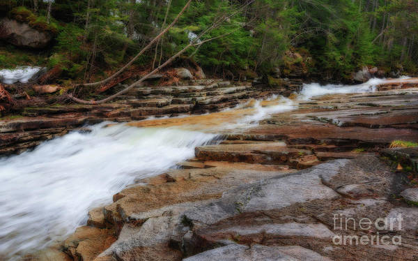 Photograph - Bemis Brook Waterfall by Sharon Seaward
