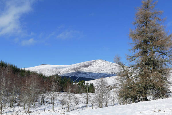 Photograph -  Ben Rinnes From The Glen by Phil Banks