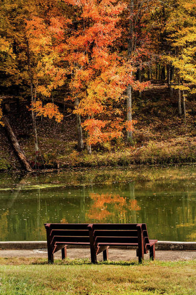 Photograph - Bench In Early Fall by Don Johnson
