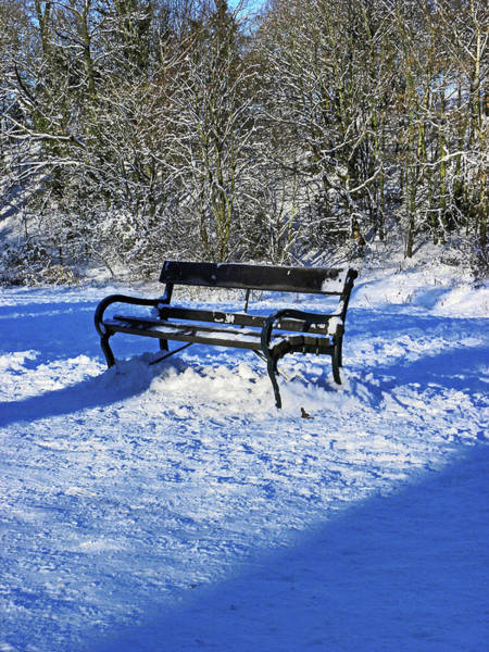 Photograph - Bench In The Snow by Lachlan Main