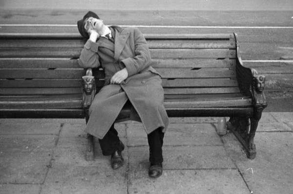 Resting Photograph - Bench Rest by Felix Man
