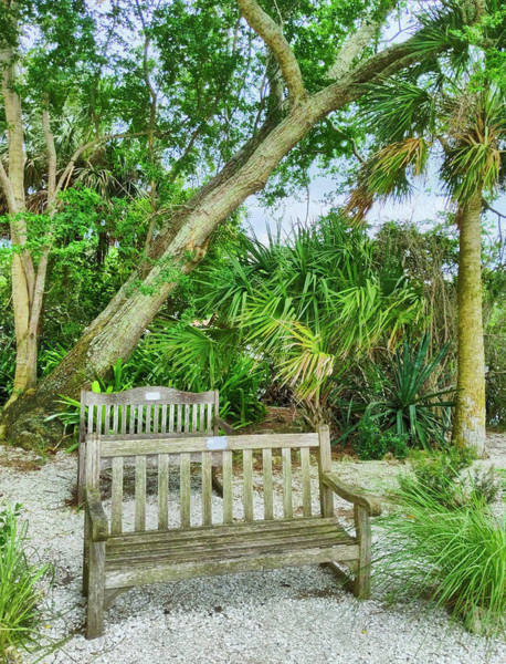 Photograph - Bench View by Portia Olaughlin