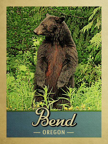 Oregon Wildlife Wall Art - Digital Art - Bend Oregon Vintage Bear by Flo Karp