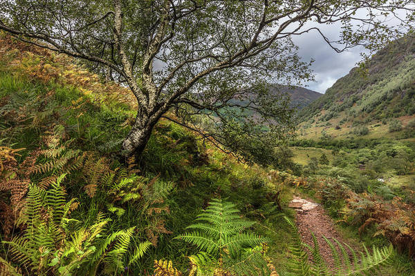 Fairy Pools Photograph - Beneath The Ben Nevis Mountain by Debra and Dave Vanderlaan