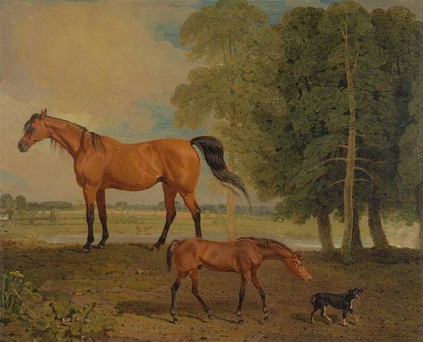 Wall Art - Painting - Benjamin Marshall   Broodmare With Foal, And A Terrier by Celestial Images