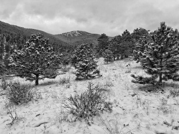 Photograph - Bergen Peak Black And White by Dan Miller