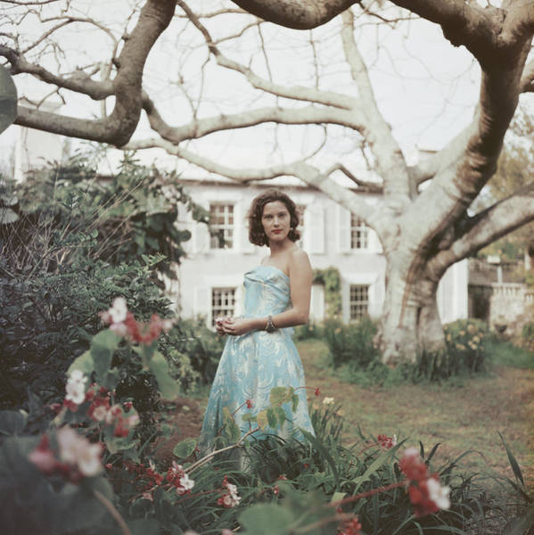 Three Trees Photograph - Bermuda, 1957 by Slim Aarons