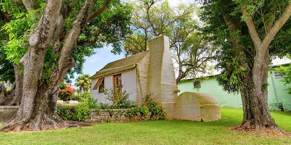 Wall Art - Photograph - Bermuda Botanical Gardens by Betsy Knapp
