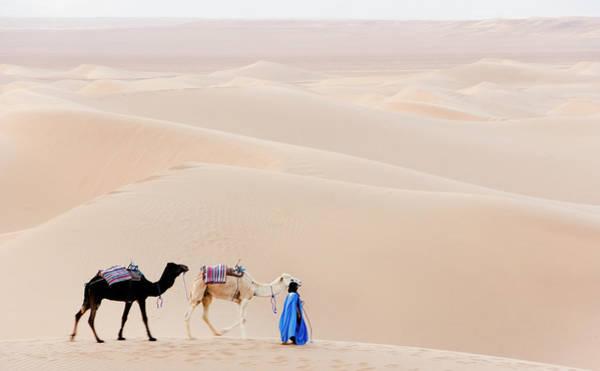 Berber Wall Art - Photograph - Berner And Camels In Desert Landscape by Roine Magnusson