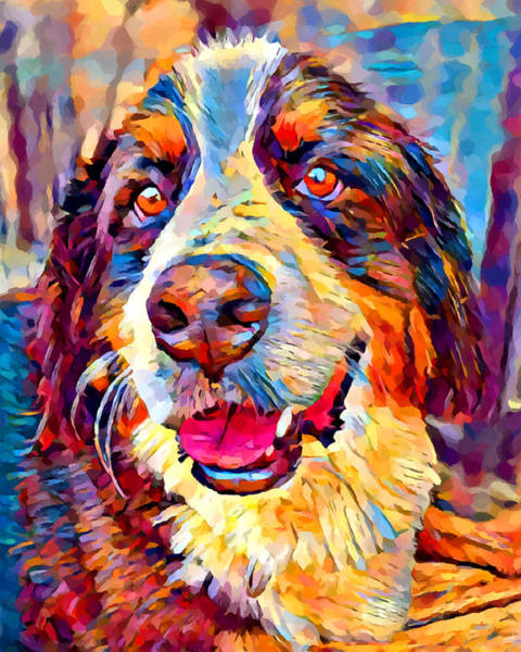 Wall Art - Painting - Bernese Mountain Dog by Chris Butler
