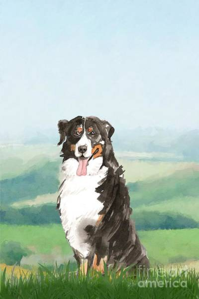 Pedigree Painting - Bernese Mountain Dog by John Edwards