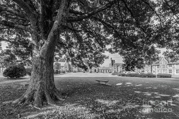 Photograph - Berry College Landscape by University Icons