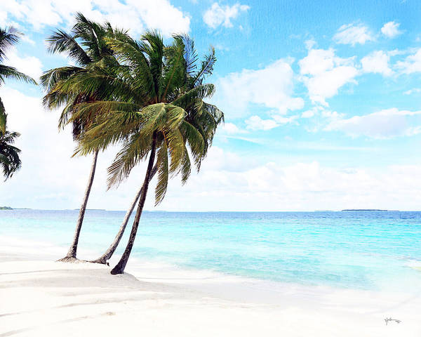 Follow Me Painting - Best Beach In Maldives by Rani S Manik