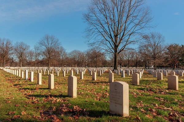 Photograph - Beverly National Cemetery by Louis Dallara