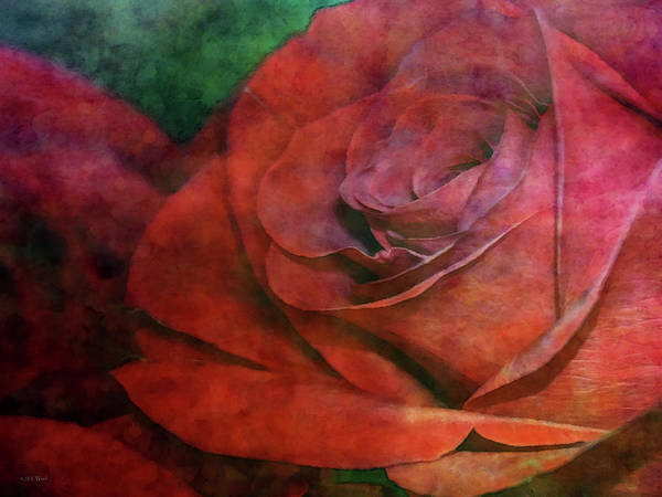 Photograph - Beyond Red 5805 Idp_2 by Steven Ward