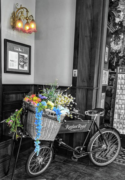 Photograph - Bicycle On Raglan Road by Portia Olaughlin