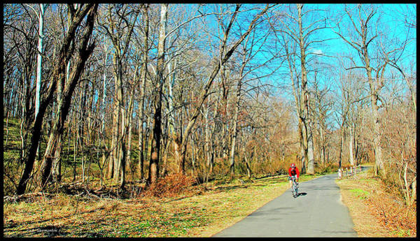 Photograph - Bicycle Rider, Fairmount Park, Philadelphia by A Gurmankin