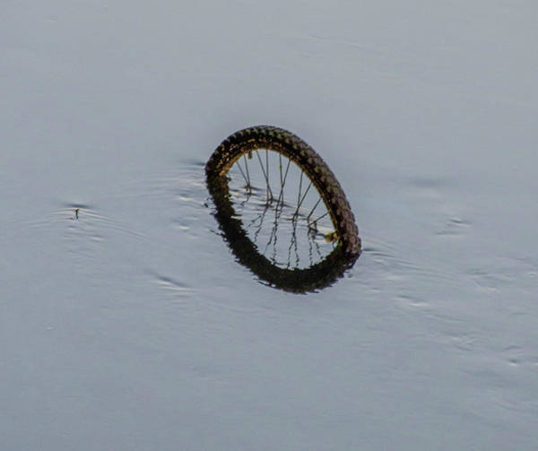 Photograph - Bicycle Wheel In The River Liffey - Dublin Ireland by Bill Cannon