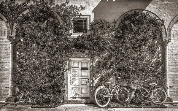 Photograph - Bicycles In The Sun Vintage Sepia by Debra and Dave Vanderlaan
