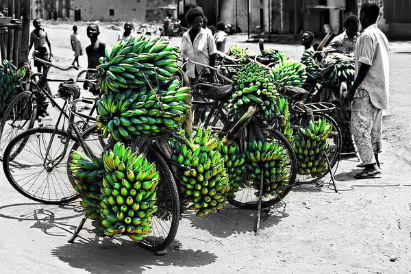 Photograph - Bicycles In Uganda by Kay Brewer