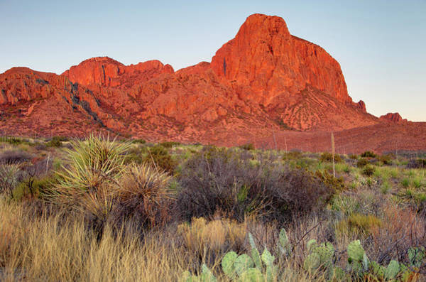 Chisos Mountains Photograph - Big Bend by Denistangneyjr