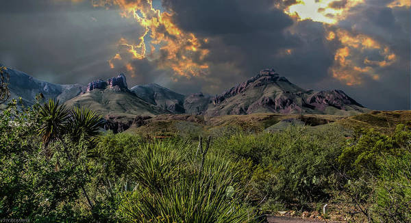 Photograph - Big Bend National Park by Gaylon Yancy