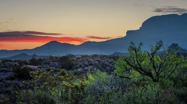 Photograph - Big Bend Sunrise by David Morefield