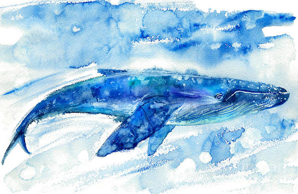 Wall Art - Photograph - Big Blue Whale And Water.watercolor by Jula lily