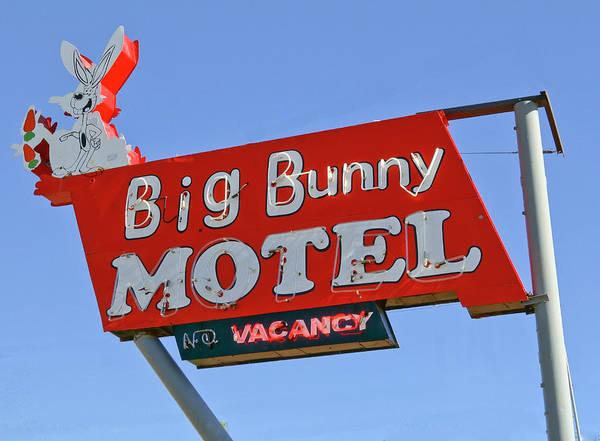 Digital Art - Big Bunny Motel by Matthew Bamberg