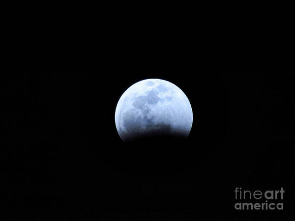 Photograph - Big Encroaching Super Blood Wolf Moon Lunar Eclipse 2019 29407 by Robert Knight