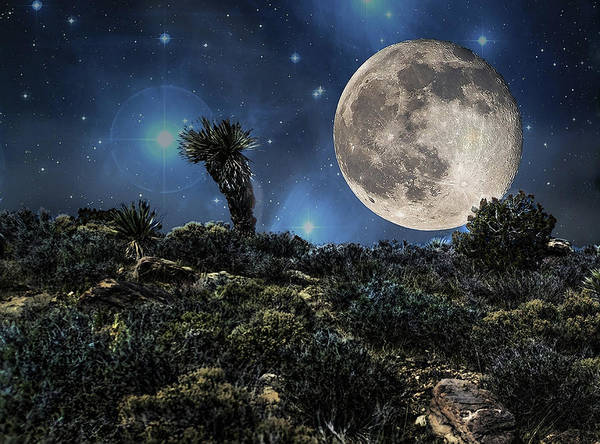 Yucca Brevifolia Photograph - Big Moon In The Desert by Photoviewplus