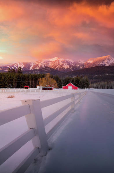 Photograph - Big Mountain Winter Splendor / Whitefish, Montana  by Nicholas Parker