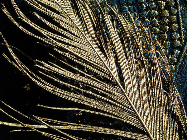 Baroque Mixed Media - Big Natural Fluffy Golden Feather On Deep Blue Background by Lara Timireva