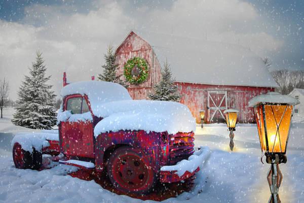Photograph - Big Red In Winter Snow by Debra and Dave Vanderlaan