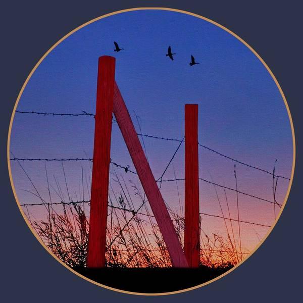 Wall Art - Photograph - Big Red - Nebraska - Transparent by Nikolyn McDonald