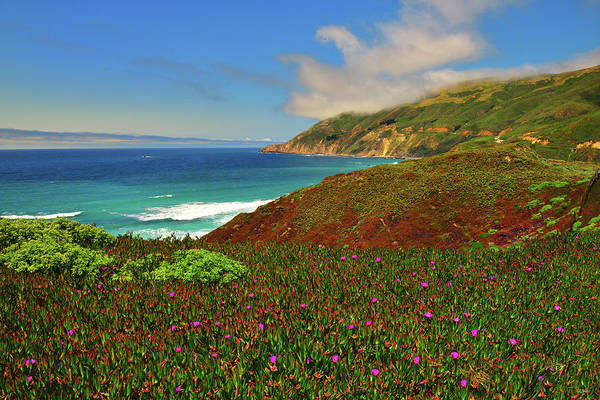 Photograph - Big Sur Spring by Greg Norrell