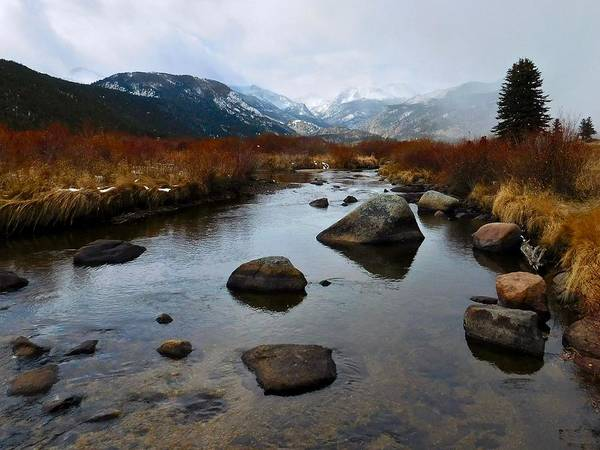 Photograph - Big Thompson River by Dan Miller