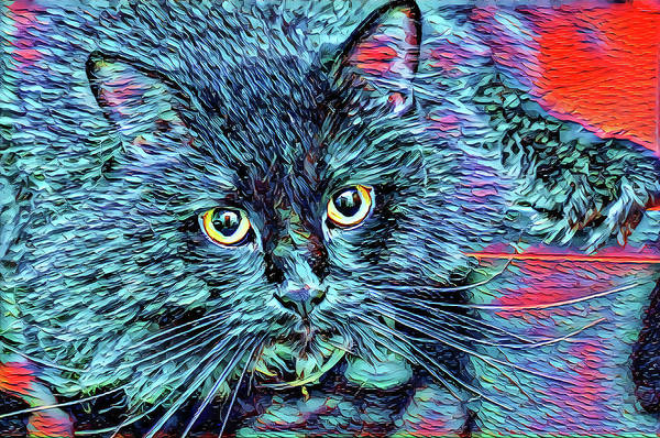 Digital Art - Big Whiskers Blue Cat by Don Northup