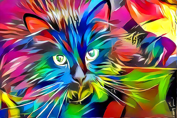 Digital Art - Big Whiskers Cat by Don Northup