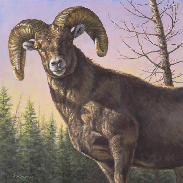 Painting - Bighorn by Kim Lockman