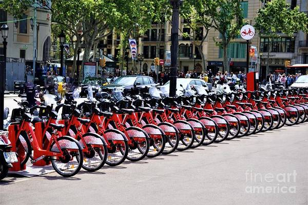 Photograph - Bikes In Barcelona by Jimmy Clark