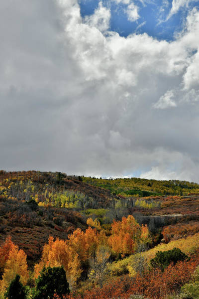 Photograph - Billowing Clouds Over Dallas Divide Colors by Ray Mathis