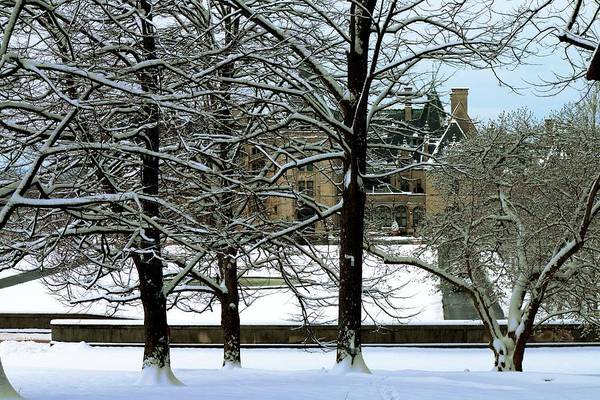 Photograph - Biltmore Behind The Snow Covered Trees by Carol Montoya