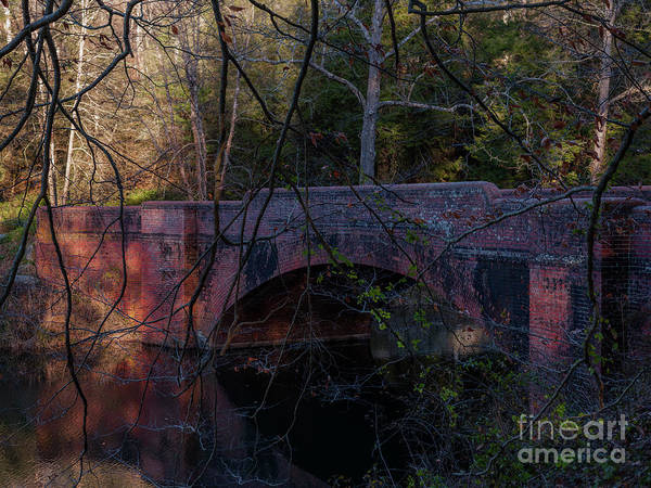 Photograph - Biltmore Estate Bridge Over Bass Pond by Dale Powell