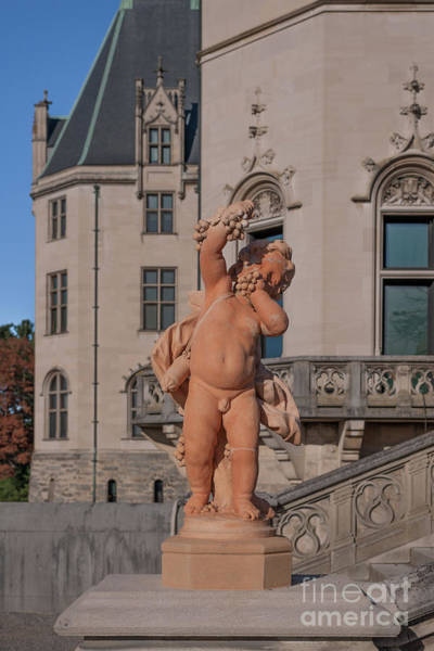 Photograph - Biltmore Estate - Statue by Dale Powell